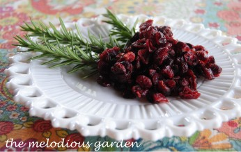 cranberry and rosemary