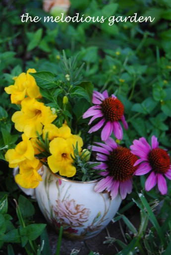 flower arrangement with rosemary