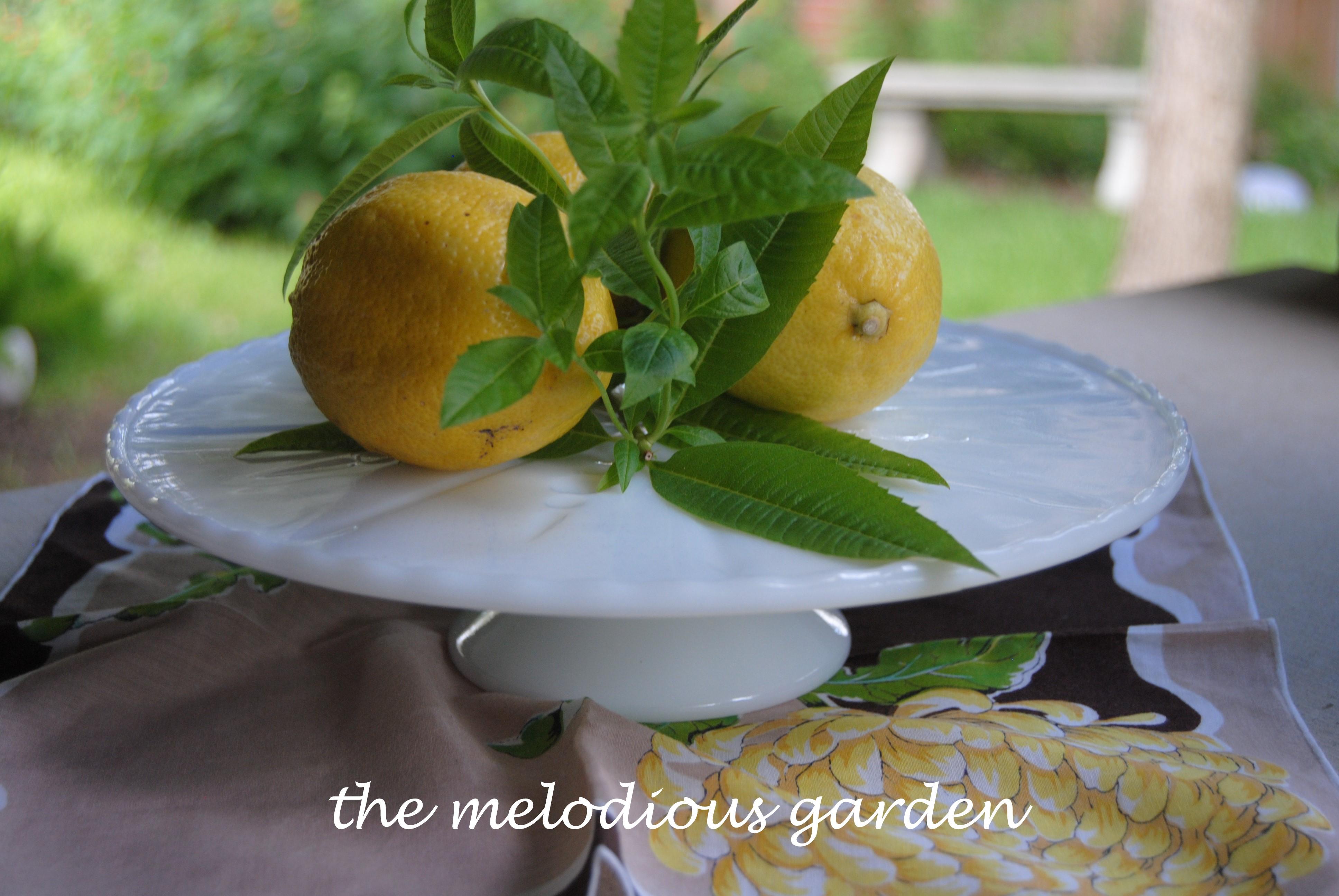 lemon on milk glass