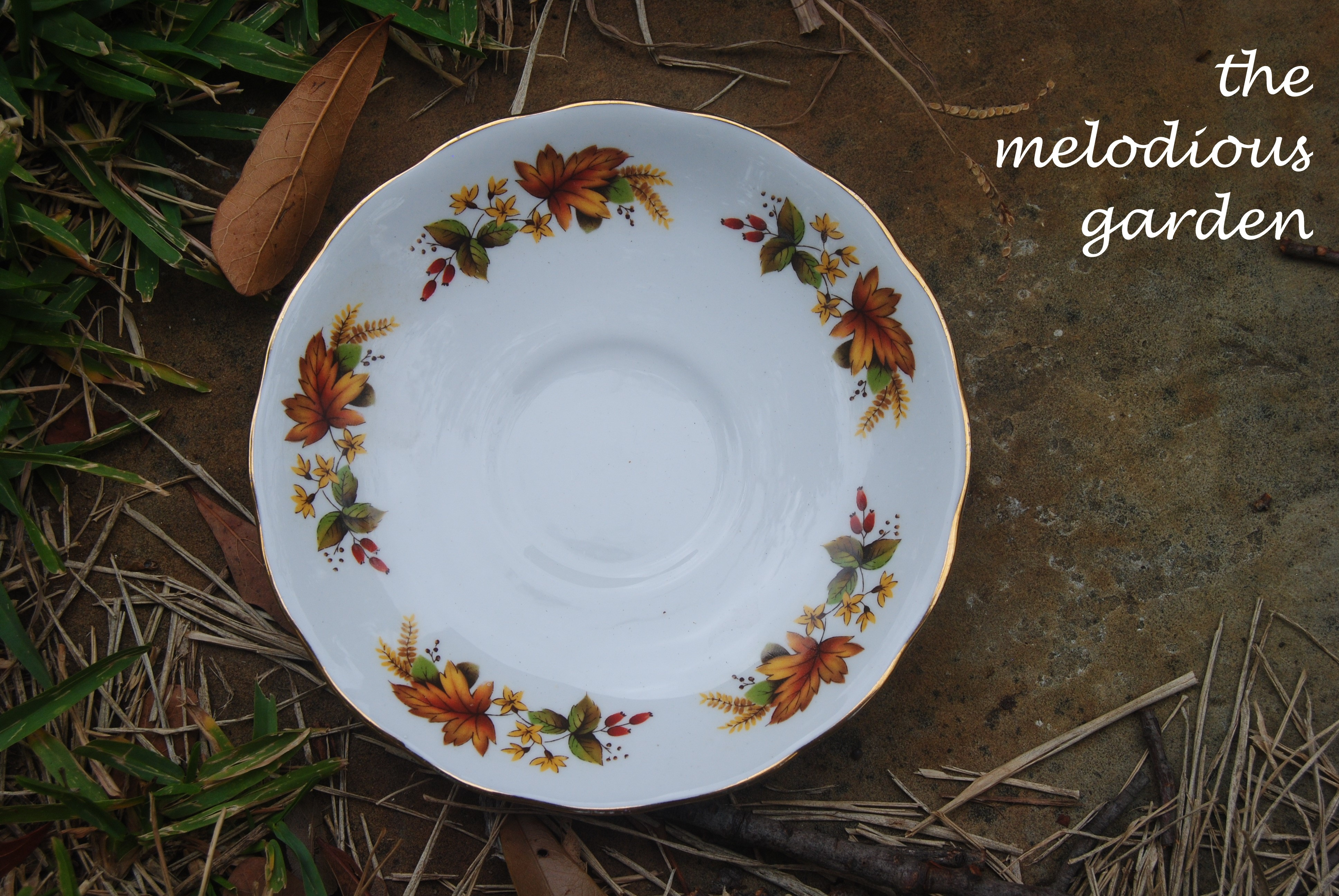 fall dish 2