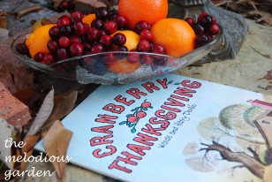 cranberry thanksgiving 1