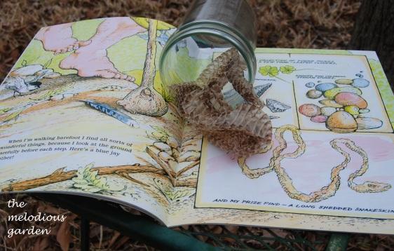 arnosky snake