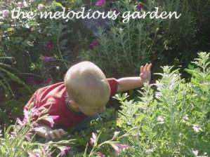 el in garden